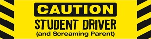 Image result for student driver funny