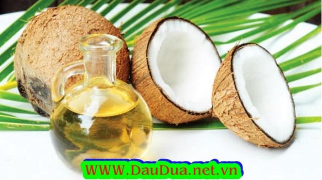 coconut oi-Dau dua-dầu dừa-an dau dua-tac dung dau dua-tinh dầu dừa-mua dầu dừa-lam trang da-lam dep bang dau dua-tu lam trang da-cach lam trang da tu nhien-duong da-tay trang