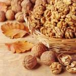 Những thực phẩm tốt ngăn ngừa rụng tóc