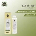 Bí quyết chọn mua dầu gội chống rụng tóc và kích thích mọc tóc hiệu quả