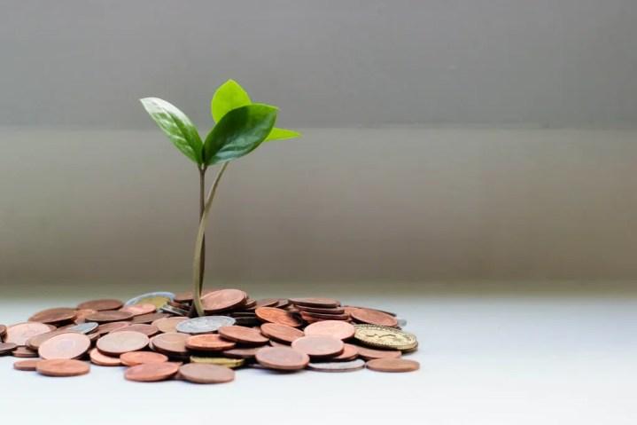 hạnh phúc tài chính