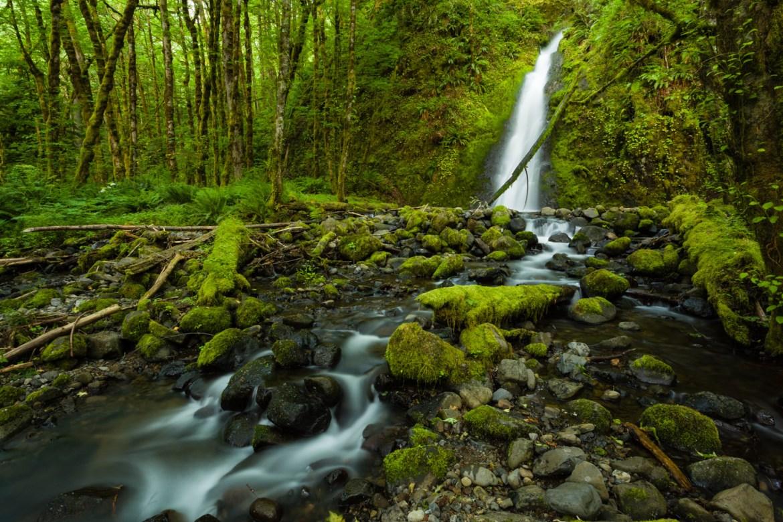 Ruckel Creek Falls, Oregon