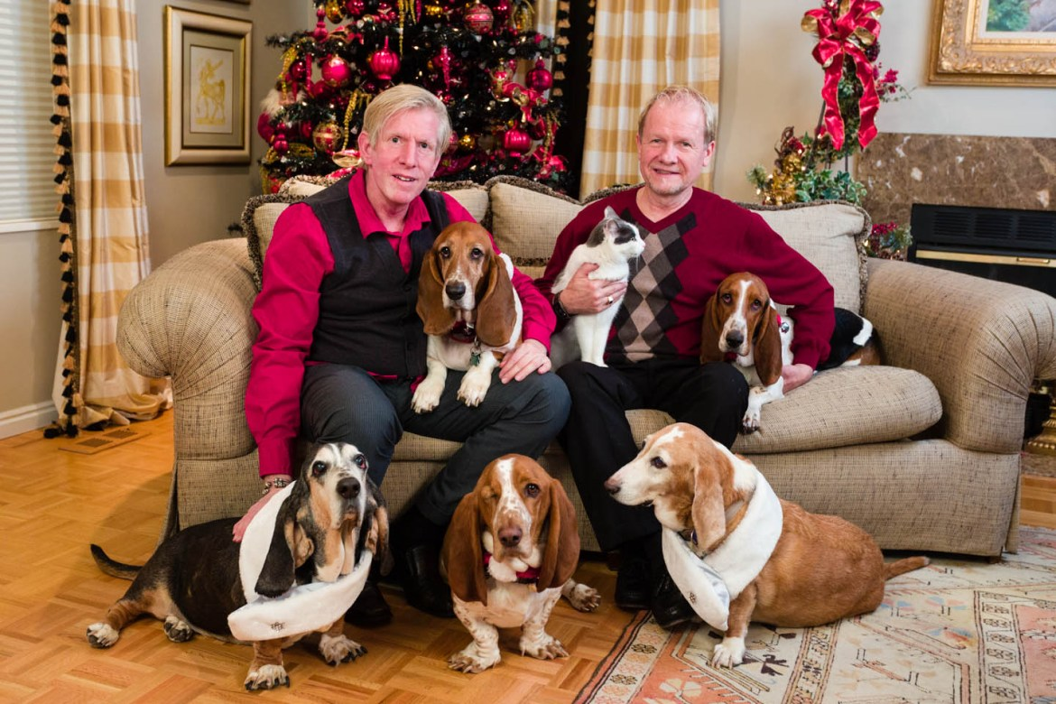 All the basset hounds and a cat