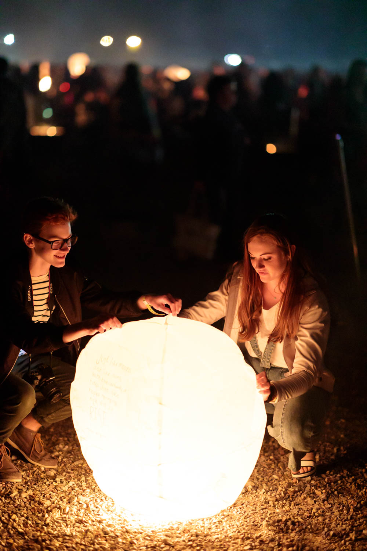 Hoping the lantern flies