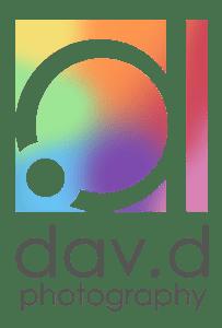 dav.d photo logo for Pride Month