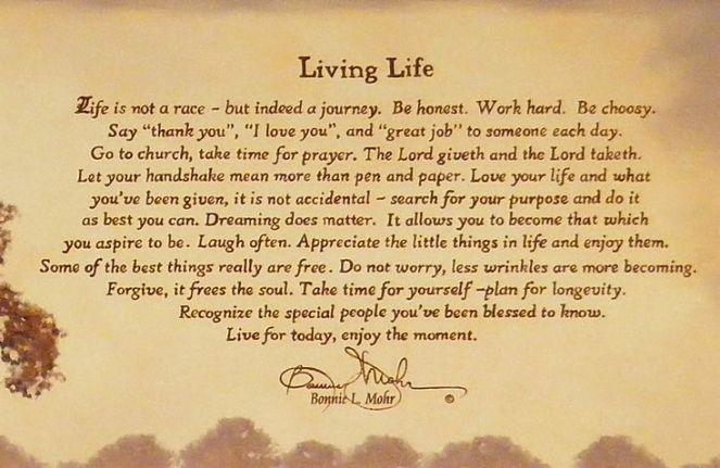 living life.jpeg