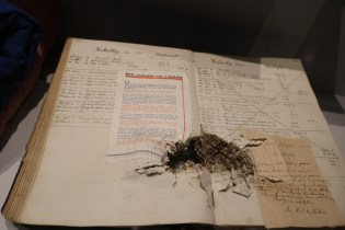 A display that shows damage in a text from the Battle of the Bulge.