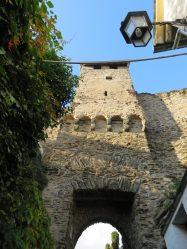 Medieval walls of Cochem