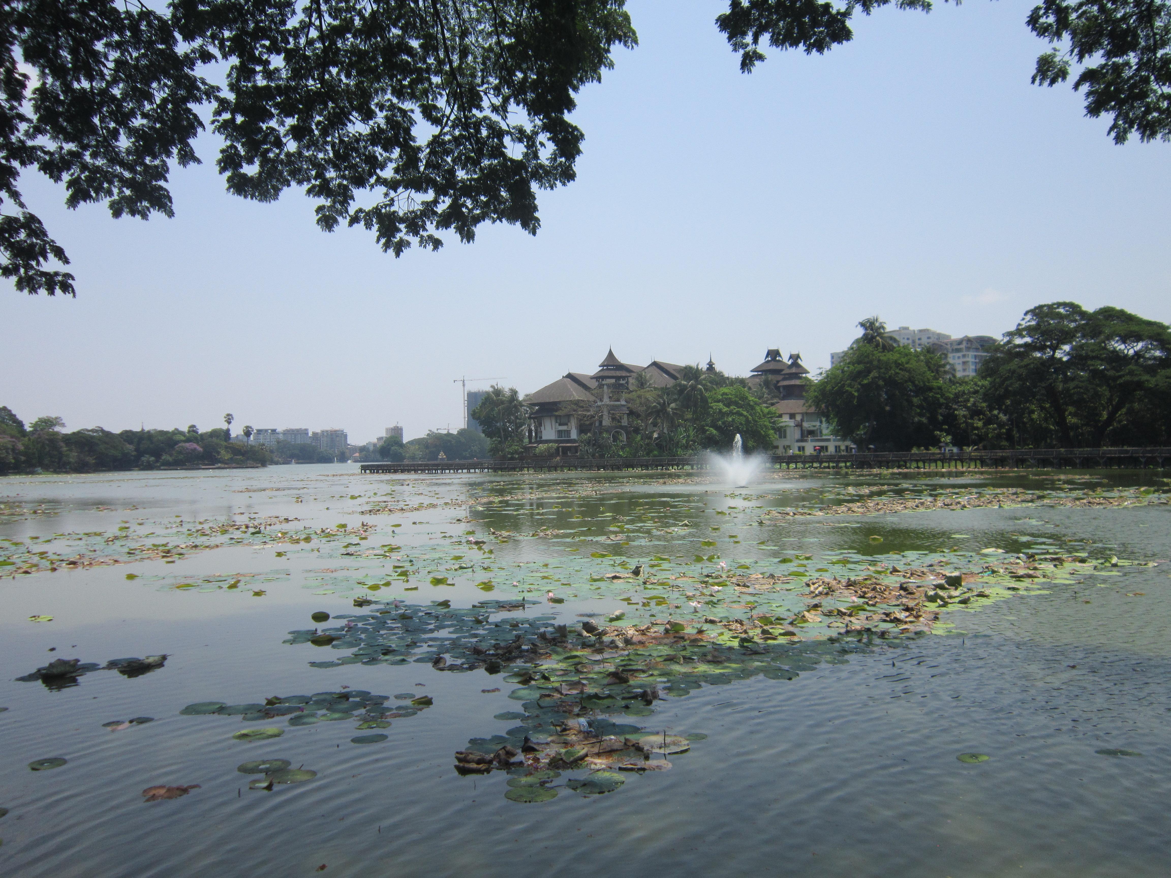 Kandawgyi lake
