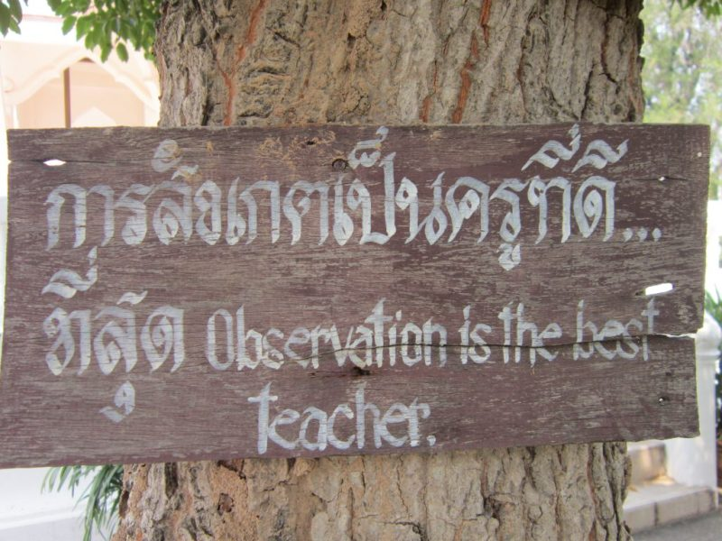 respecting Buddhist beliefs - Buddhist wisdom