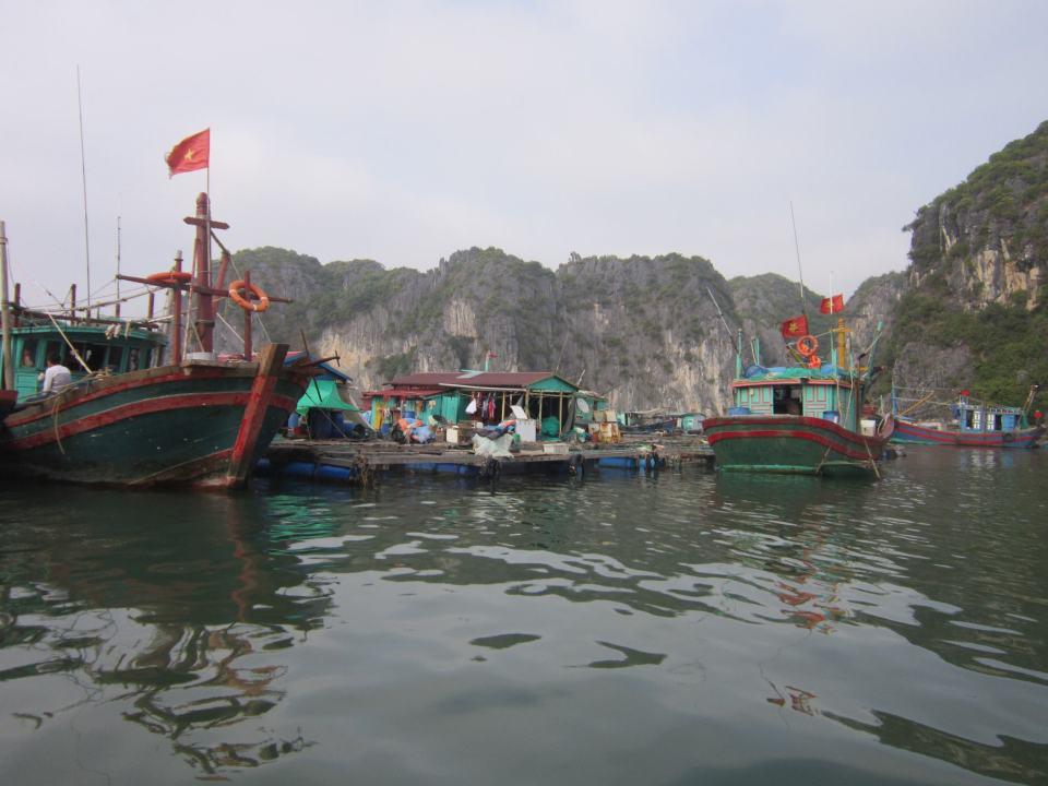 Vietnamese boats in Lan Ha Bay