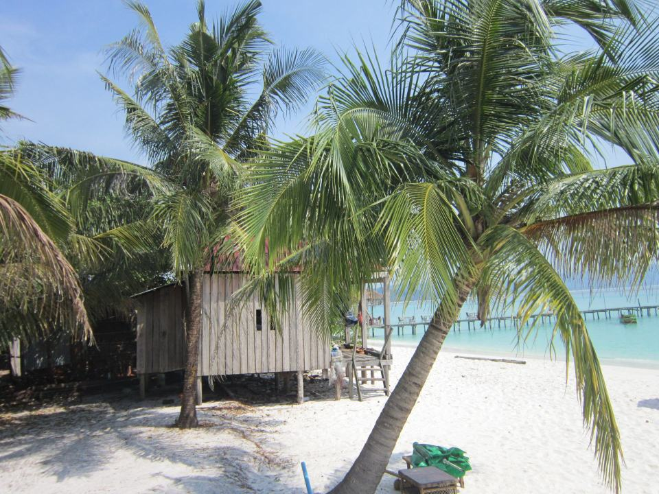 A bungalow and tree's on sok san beach, Koh Rong, Cambodia. You can see the sea in the background. The sand is white and the sea a pale blue.