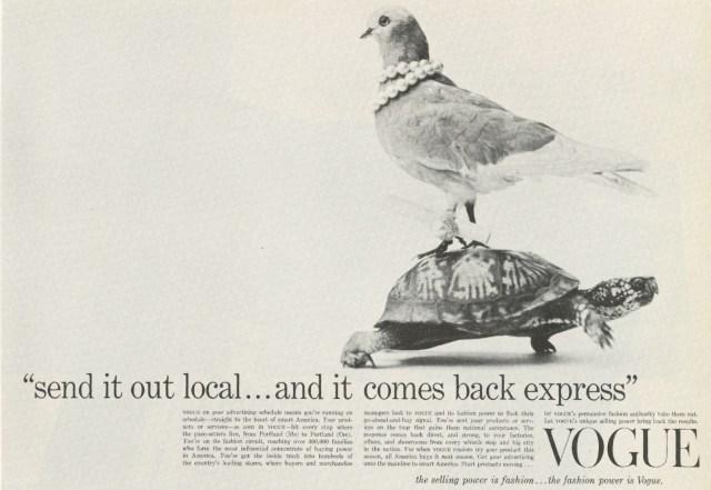 Vogue 'Pigeon', Lester Bookbinder, Dick Loew-01