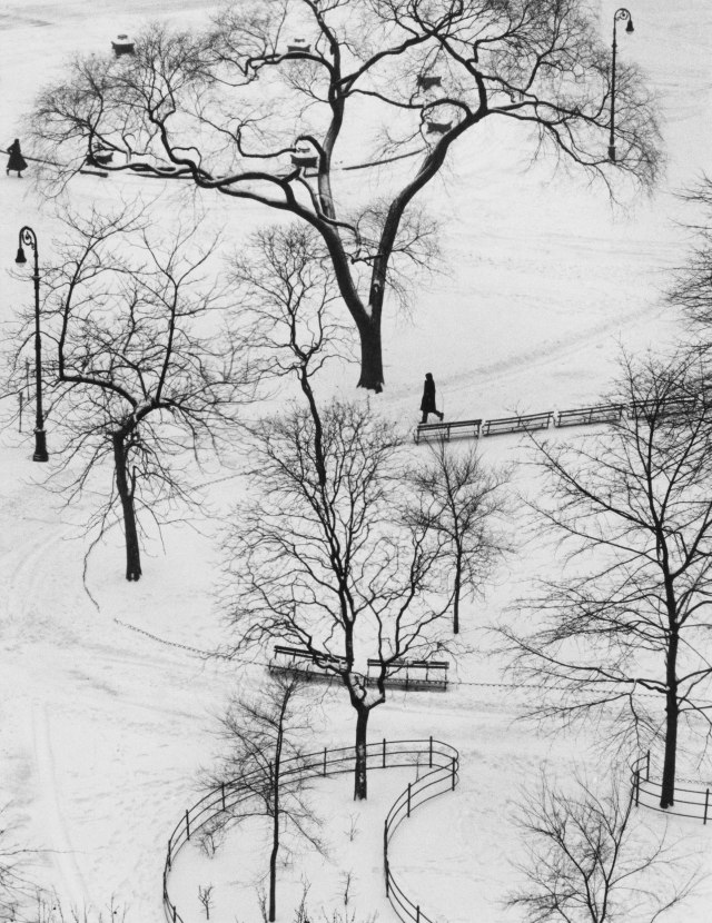 snow-andrez-kertez