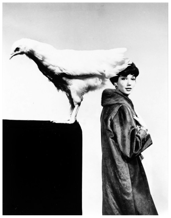 Guy Bourdain - 'Cockeral', 1962