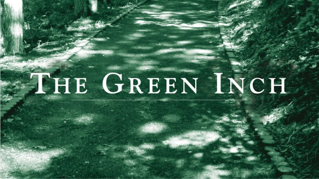 'The Green Inch Single Frame' Therapy Short Film, DHM*.jpg