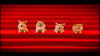 corgis-2nd-version-tony-davidson-bmp_std.original