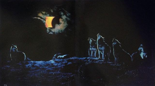 'Wolves' B&H, Graham Fink, CDP.jpg