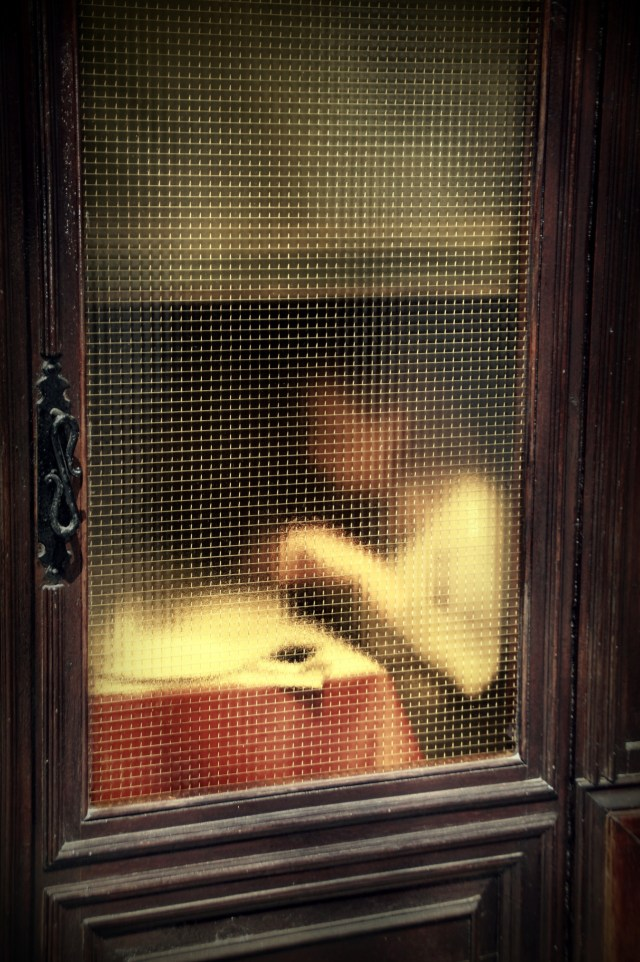 1. 'Wire Window', Saul Leiter:Dave Dye