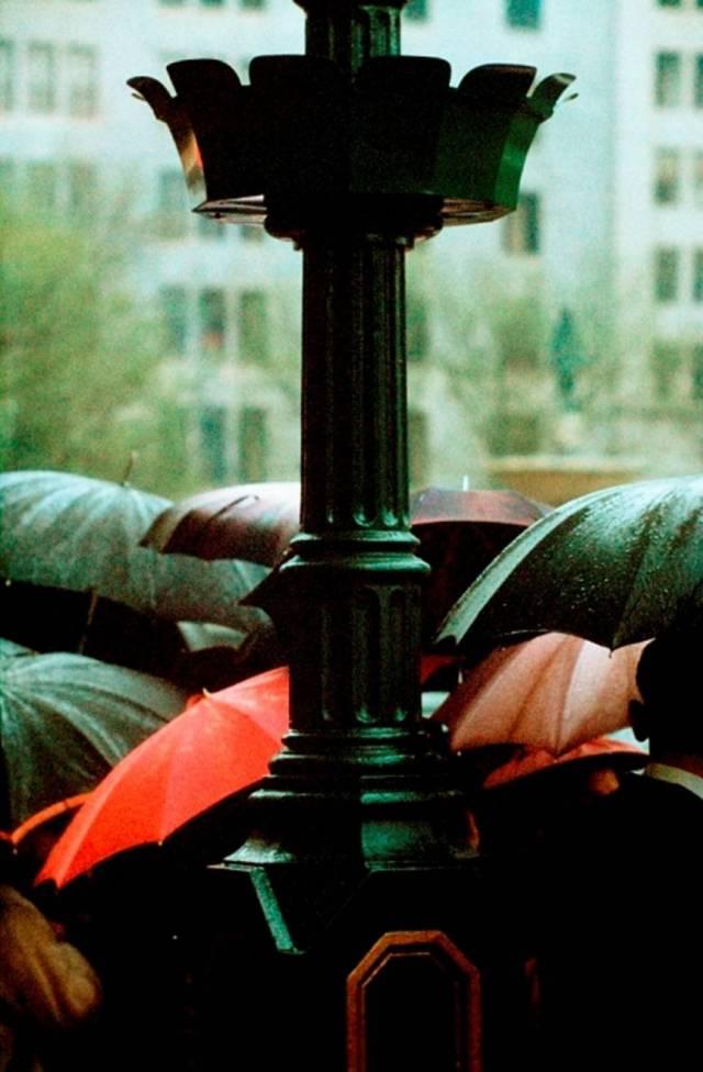 5. '10 Umbrellas', Saul Leiter:Dave Dye