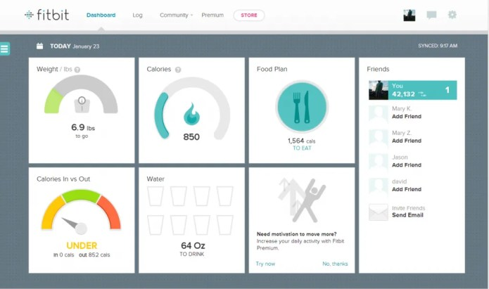 This is a screenshot I took of my FitBit dashboard on 1/23/14 at 10:30 am. I haven't yet exercised for the day - nor have I entered my breakfast - but it gives you an idea...