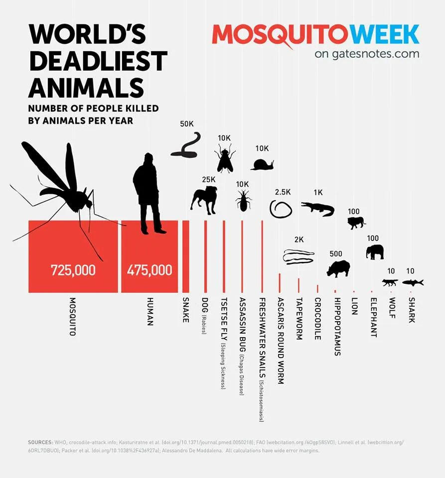 An infographic from Bill Gates on the deadliest animals in the world.