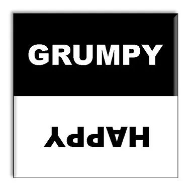 Gruppy / Happy Dishwasher Magnet