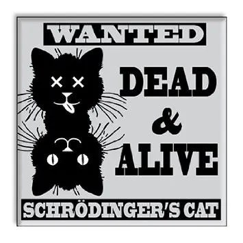 Schrodinger's Cat Dishwasher Magnet