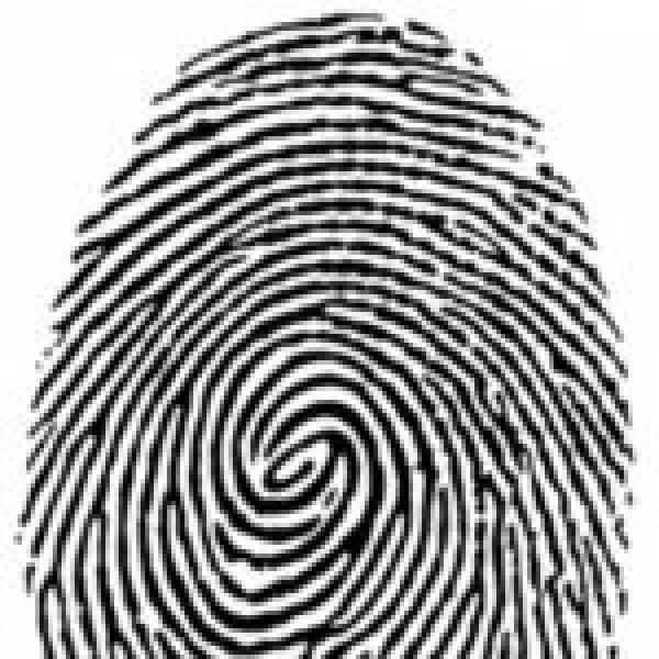 Profile picture of B. Macharia