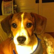 Profile picture of Ashton Dakotah Tucker