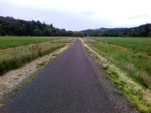 One of my favorite stretches of the Banks-Vernonia Trail. It's about 1/2 mile through flat, open fields on either side with a beautiful, old oak tree in the middle and past my favorite piece of property.
