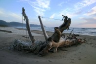 Beach goers are creative. We came across this about a mile down the beach from Cape Lookout State Park.
