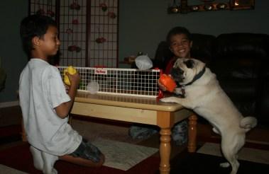 Dizzy plays referee.