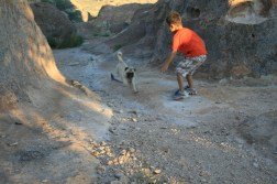 Boy and dog releasing excess energy.