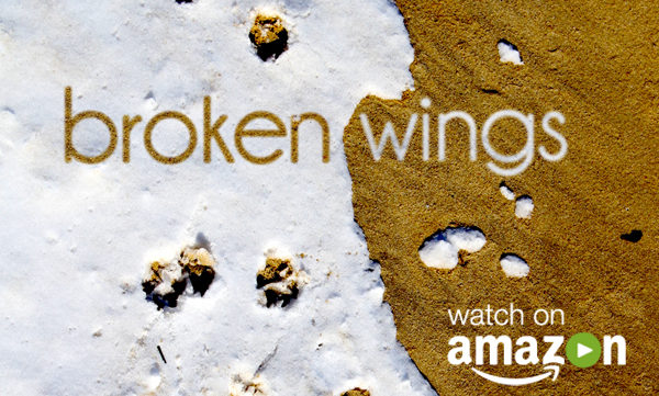 Click here to go to Broken Wings on Amazon Video!