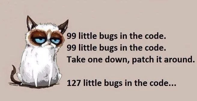 Programming Humor Comic with Grumpy Cat