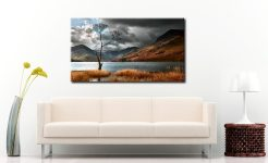 The Buttermere Tree - Canvas Print on Wall