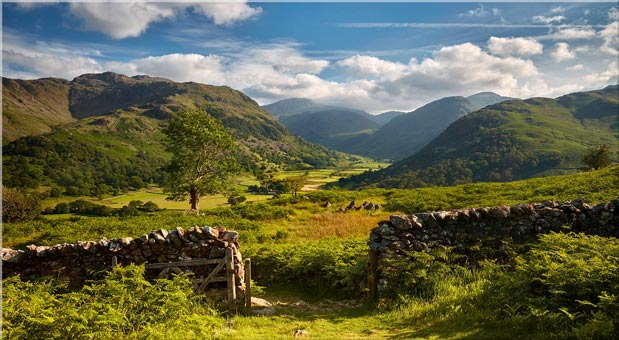 Green and Pleasant Land - Canvas Lake District