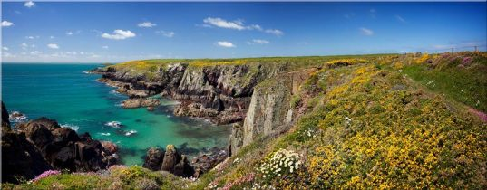 Spring in Pembrokeshire - Canvas Prints