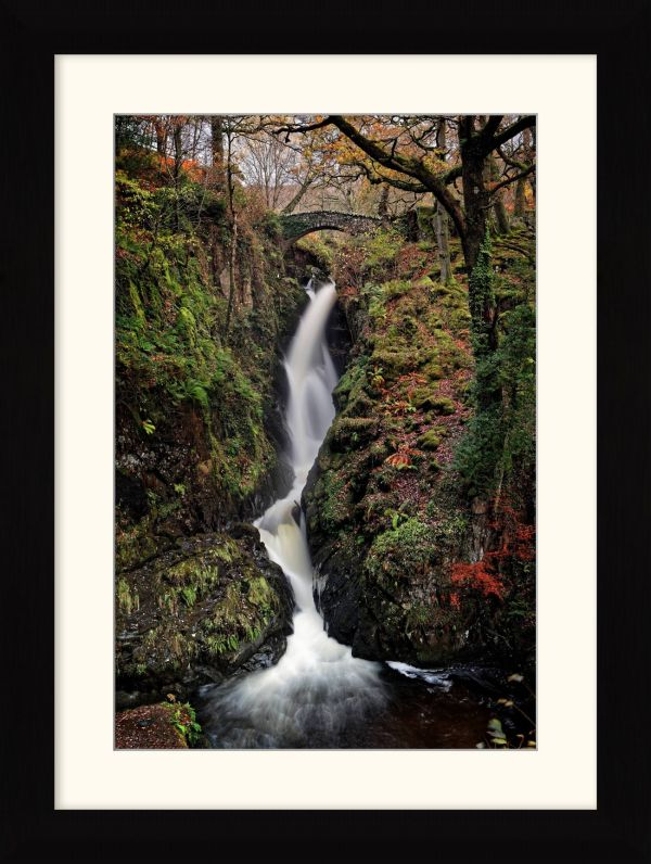 Aira in Full Force - Framed Print with Mount
