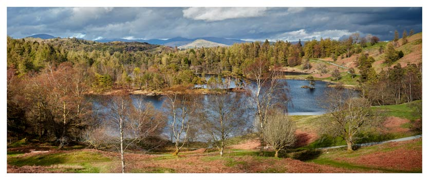 Tarn Hows Spring Sunshine - Lake District Print