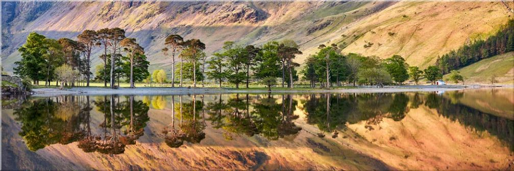 Golden Dawn Buttermere - Canvas Prints