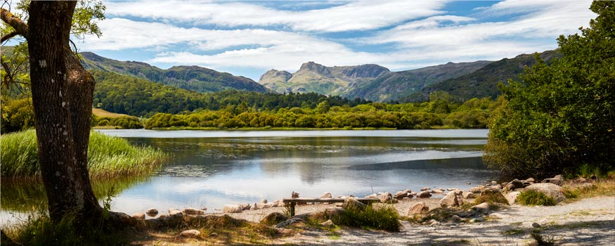 Elterwater Summer Afternoon - Canvas Print