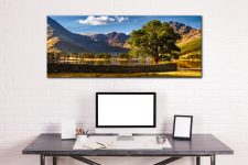 The Buttermere Oak Tree - Canvas Print on Wall