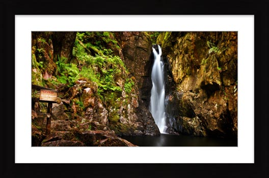 Stanley Ghyll Force Gorge - Framed Print