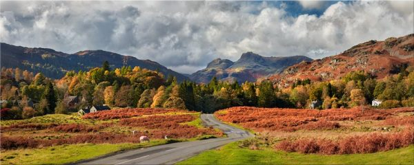 Elterwater to Langdale - Canvas Print