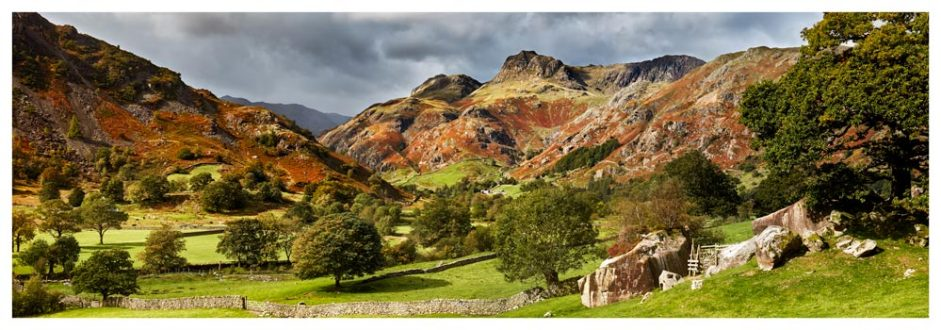 Summer Greens of Langdale - Lake District Print