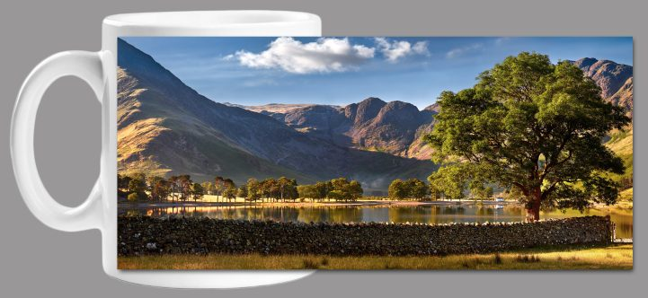 The Buttermere Oak Tree Mug