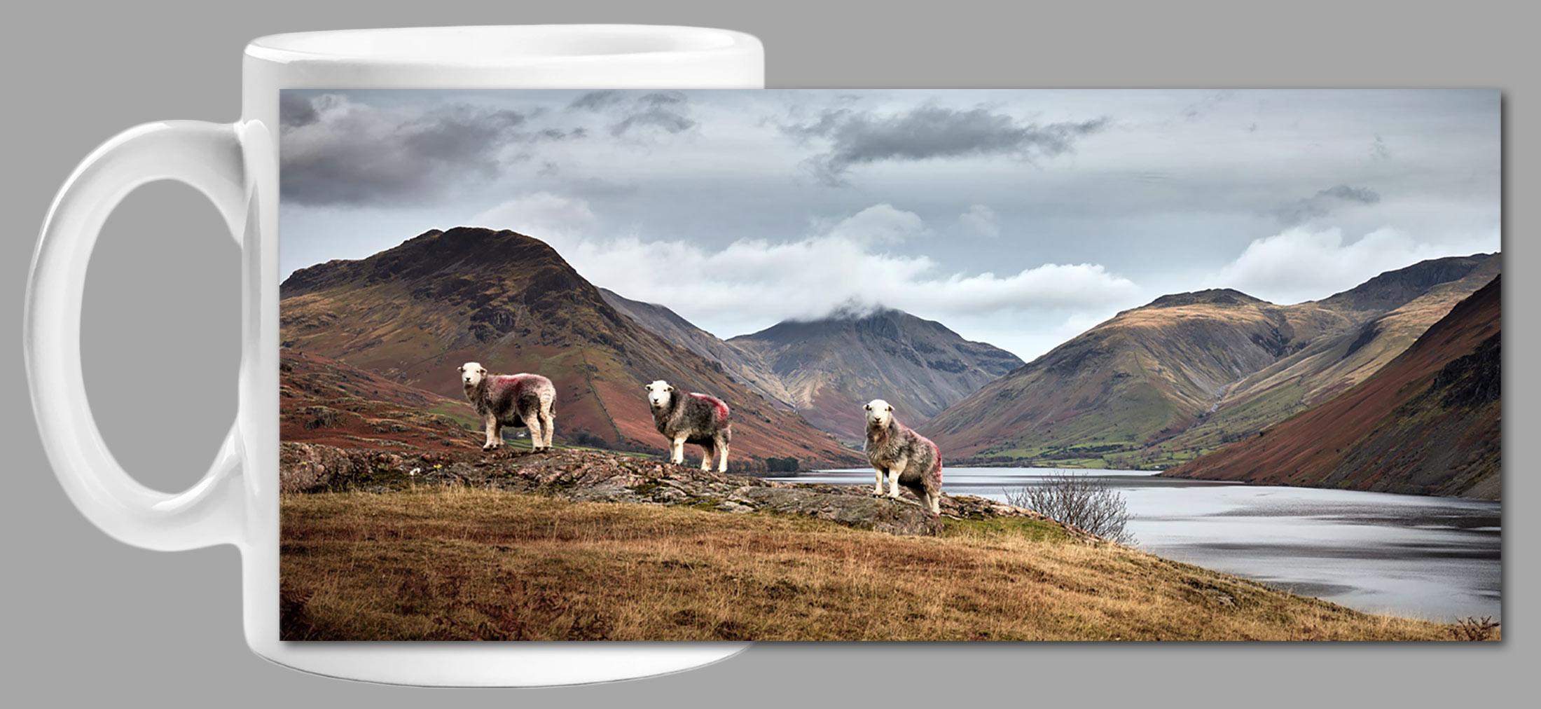 Three Sheep at Wast Water Mug