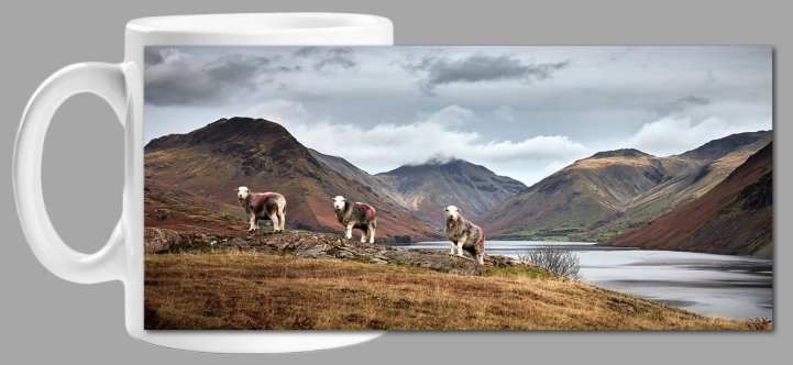 Three Sheep at Wast Water Mug
